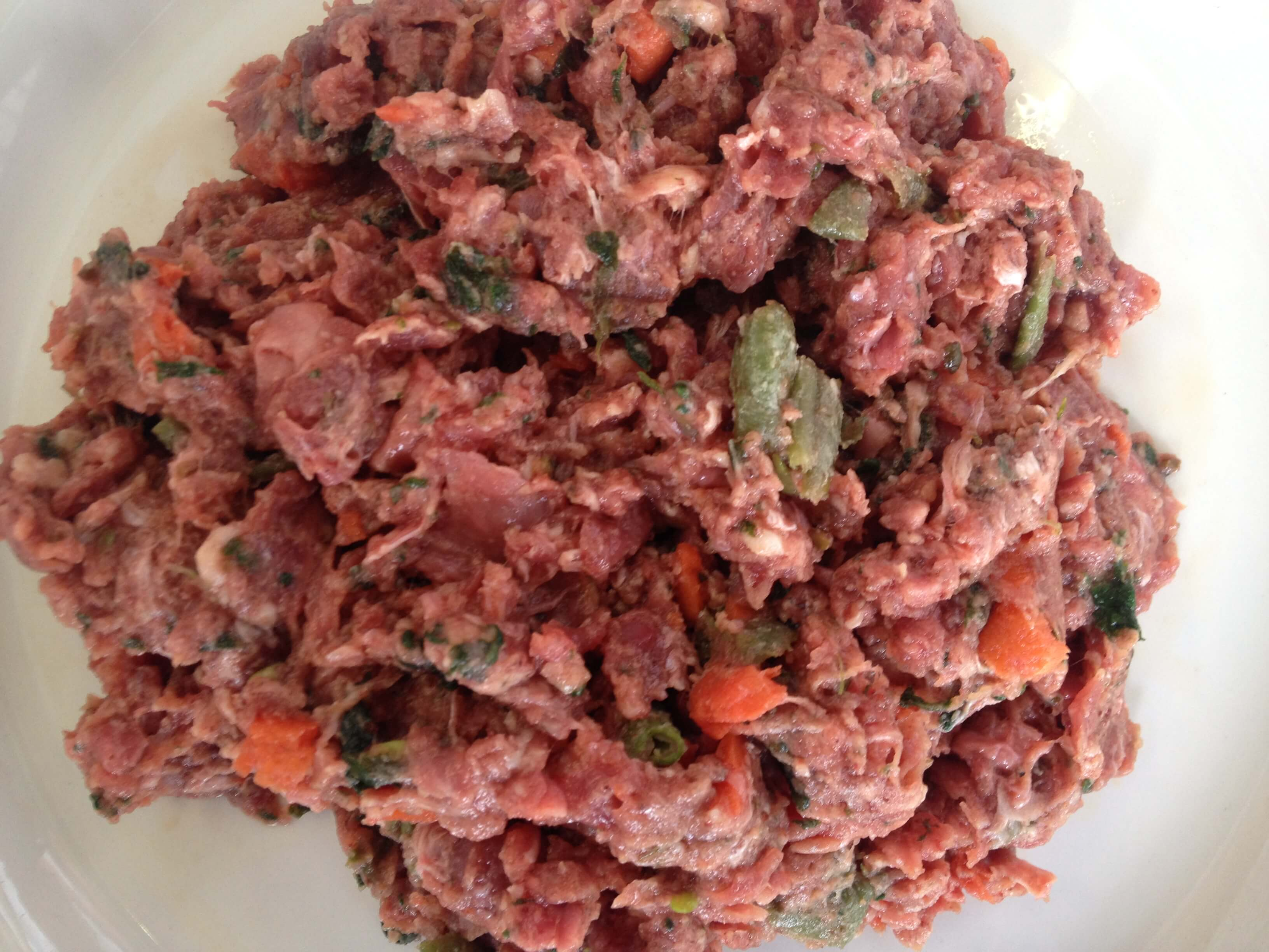 DIY raw diet for dogs slashes the cost of raw dog food