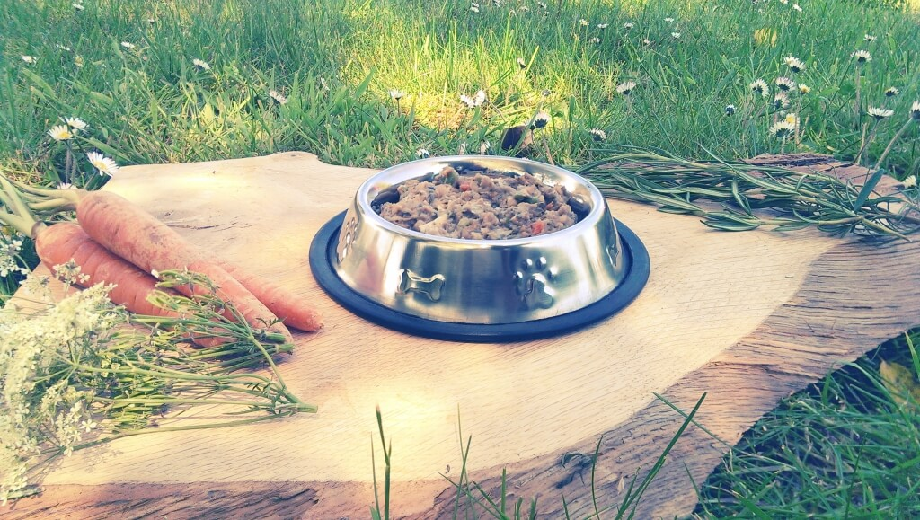 salmon and whitefish hypoallergenic dog food