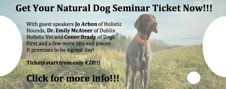 Your Natural Dog Seminar 2017