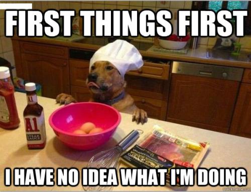 Natural Dog Treats Part 2 – Best Natural Dog Treats and Yummy Recipes!