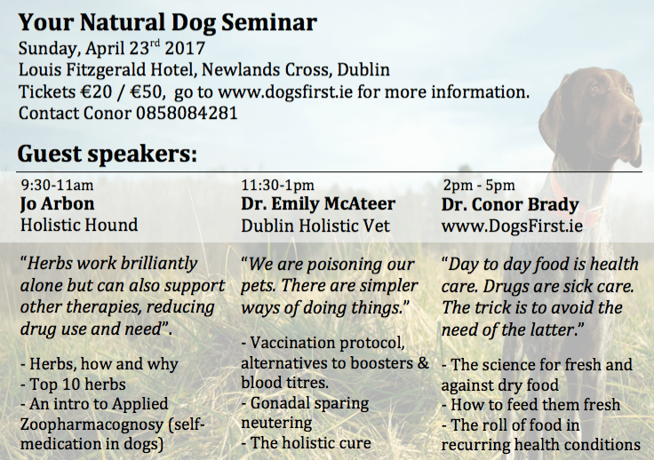 Your Natural Dog Seminar Flyer Back